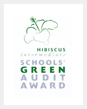 Green-Audit.jpg